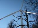 Winter im Windpark